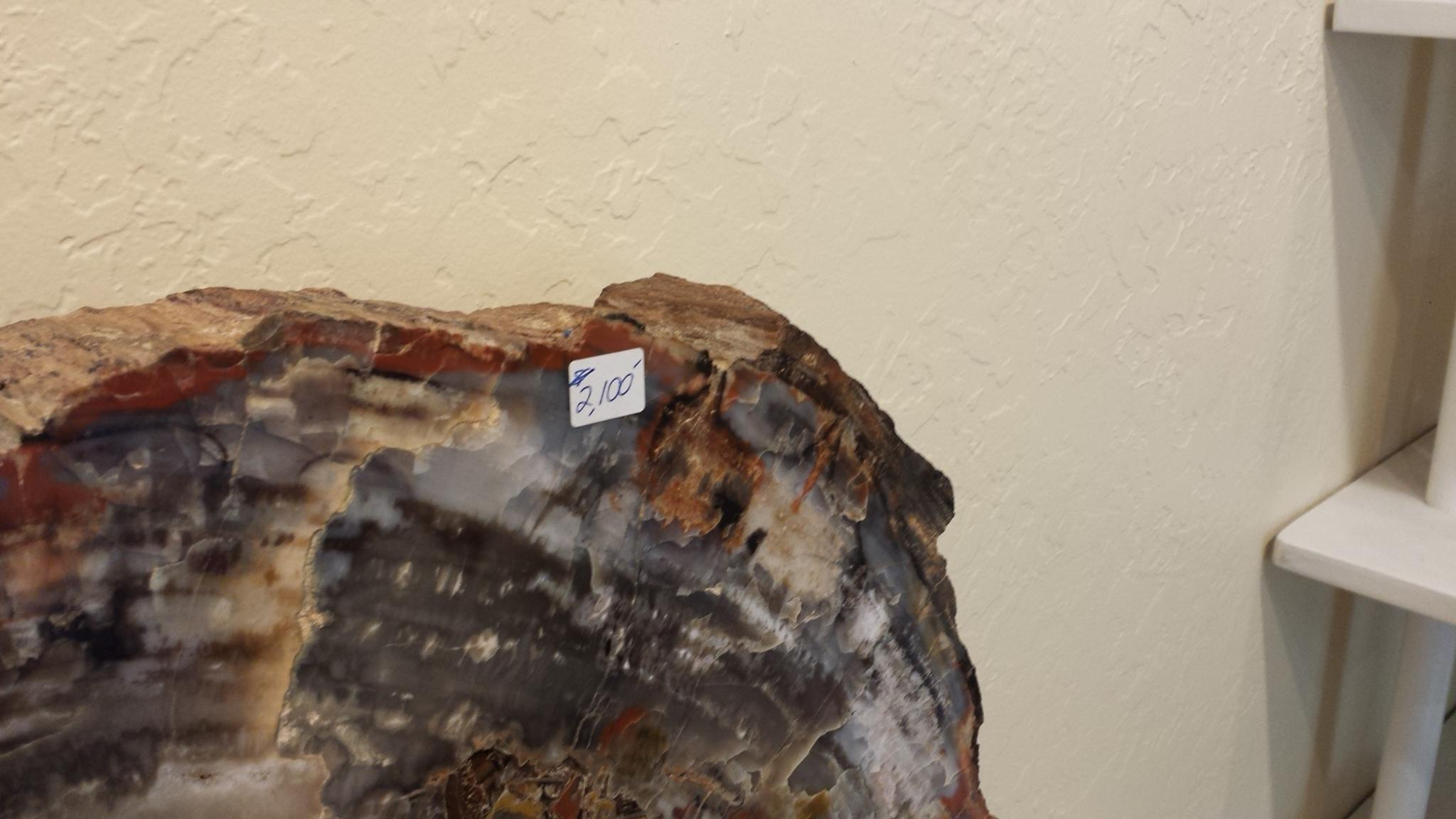 Petrified Rock $2100
